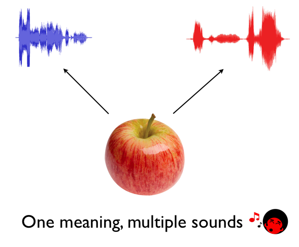2- one meaning multiple sounds