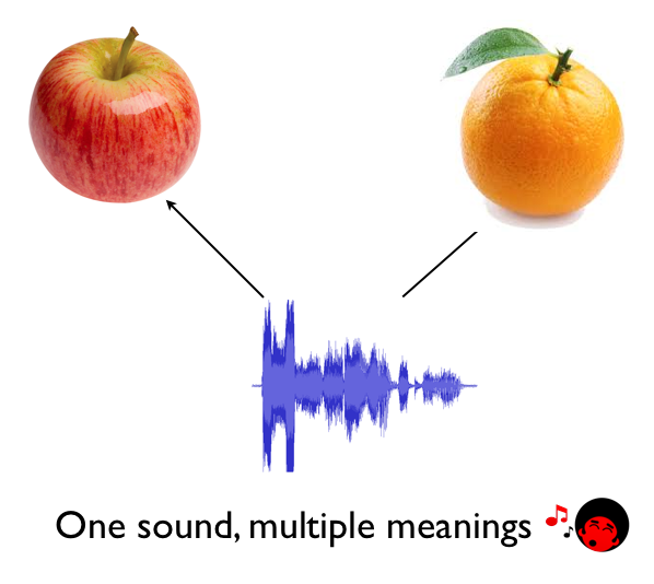 3- one sound multiple meanings